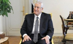 Adly Mansour, Egyptian  President