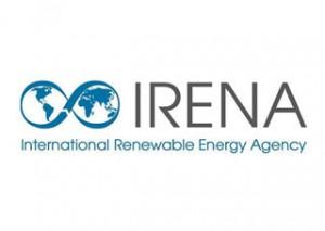 International Renewable Energy Agency (IRENA)