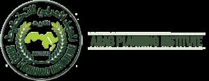 the Arab Planning Institute ''API''