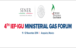 UAE participates in the 4th Joint Ministerial Gas Forum in Mexico